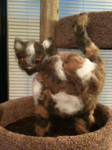 fur creature